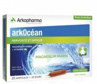 Arkocean Magnesium Marin Solution Buvable Caramel 20 Ampoules/10ml à Courbevoie