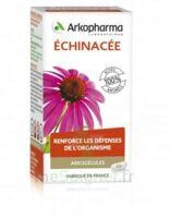 Arkogélules Echinacée Gélules B/45 à Courbevoie