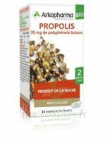 Arkogélules Propolis Bio Gélules Fl/45 à Courbevoie