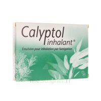 CALYPTOL INHALANT, émulsion pour inhalation par fumigation à Courbevoie