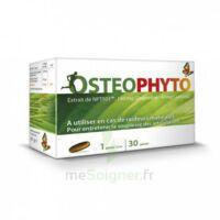 osteophytum 30 gelules à Courbevoie