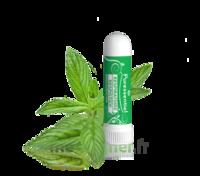 PURESSENTIEL RESPIRATOIRE Inhalation nasal 19 huiles essentielles à Courbevoie
