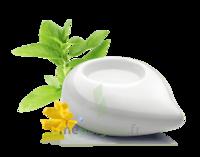 PURESSENTIEL DIFFUSION Diffuseur à chaleur douce céramique blanc à Courbevoie