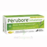 PERUBORE Caps inhalation par vapeur inhalation Plq/15 à Courbevoie