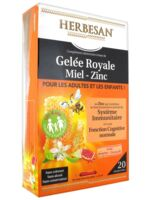 Herbesan Gelée Royale Miel - Zinc Dès 4 Ans B/20 à Courbevoie