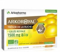 Arkoroyal Gelée royale bio 1500 mg Solution buvable 20 Ampoules/10ml à Courbevoie