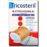Tricosteril Extensible, 1 M X 6 Cm  à Courbevoie