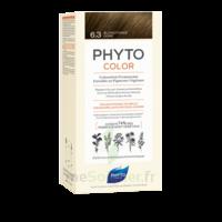 Phytocolor Kit Coloration Permanente 6.3 Blond Foncé Doré à Courbevoie