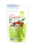 Exopharm Goji Mulberries Cranberries Bio 100g à Courbevoie