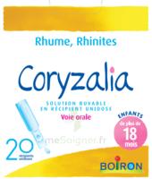 Boiron Coryzalia Solution Buvable Unidose B/20 à Courbevoie