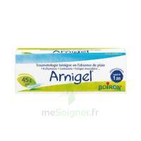 Boiron Arnigel Gel T(alumino-plastique)/45g à Courbevoie